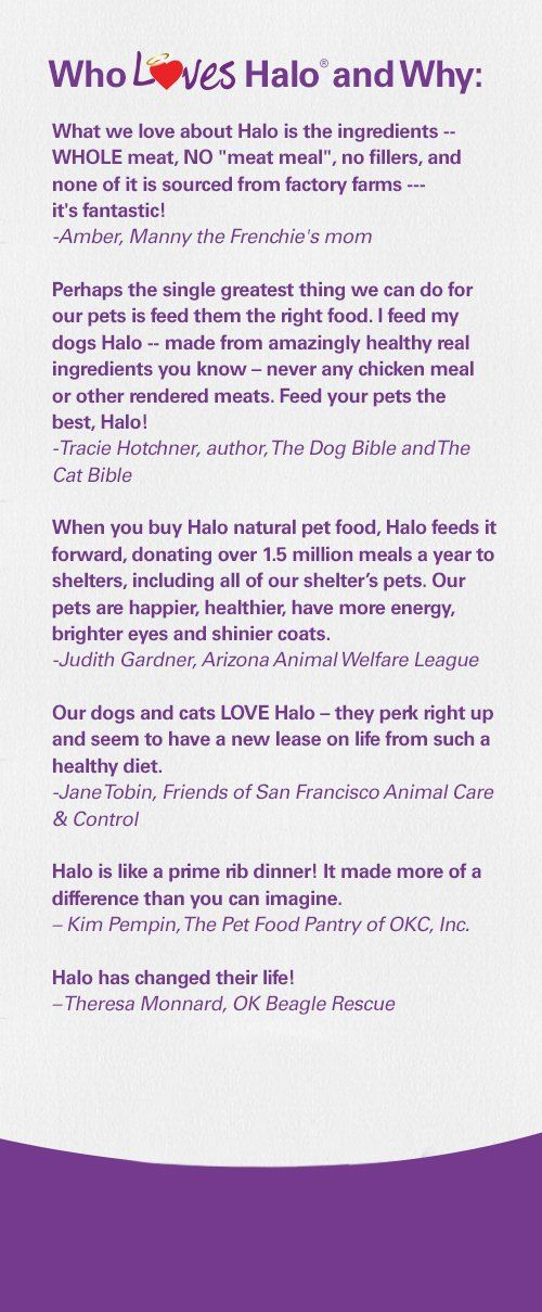 Halo Spots Stew Grainfree Surf N Turf Diet For Dogs 14pound You
