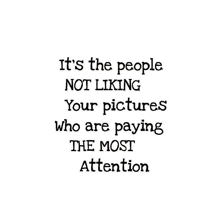 Instagram Photo By Mimokitty Apr 21 2016 At 1 08am Utc Quotes About Haters Attention Quotes Petty Quotes
