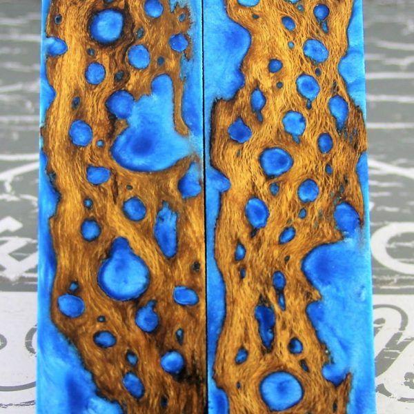 Stingray Blue Cholla Cactus 1 | Knife Handle Material | Unique
