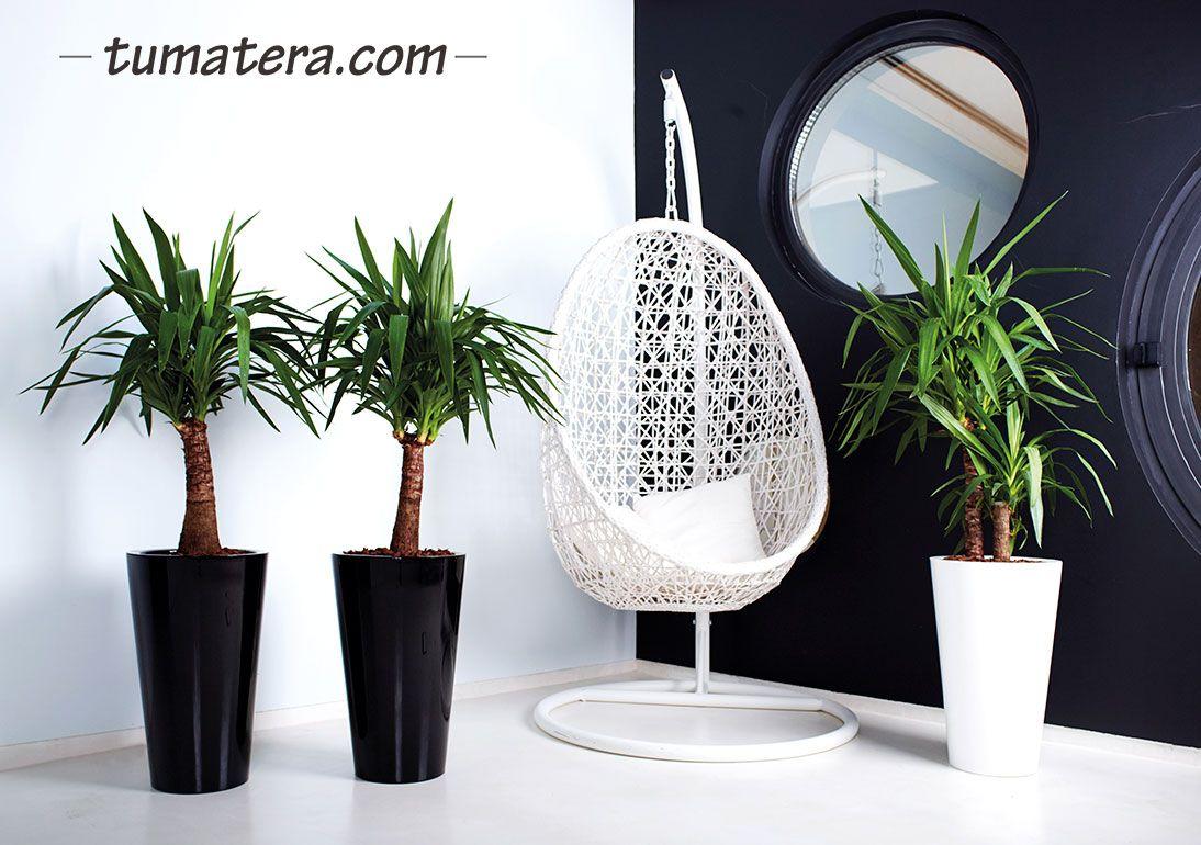 La sofisticación de sus formas combinadas con la diversidad de colores disponible es ideal para decorar tus espacios. Encuentralas en: http://www.tumatera.co/products/mpa-3354-sintra-con-insert/
