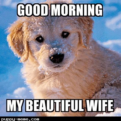 80 Good Morning Memes To Kickstart Your Day Sayingimages Com Good Morning Puppy Morning Memes Good Morning Beautiful Text