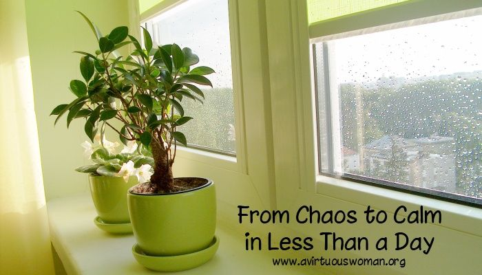 From Chaos to Calm in Less Than a Day