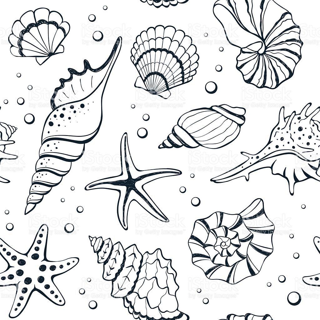 рисунок ракушек и морских звезд бумагу можно