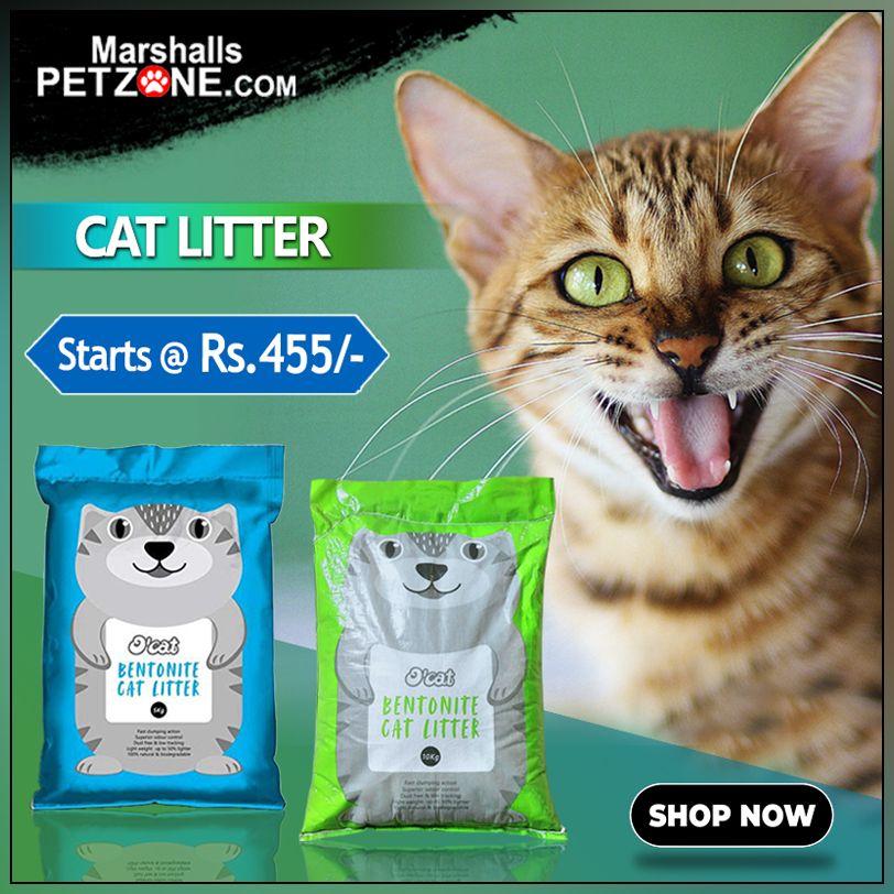 O Cat Bentonite Cat Litter Starts From Rs 455 100 Sodium Bentonite Superior Odour Control Dust Free Low Tracking Cat Litter Litter Best Cat Litter