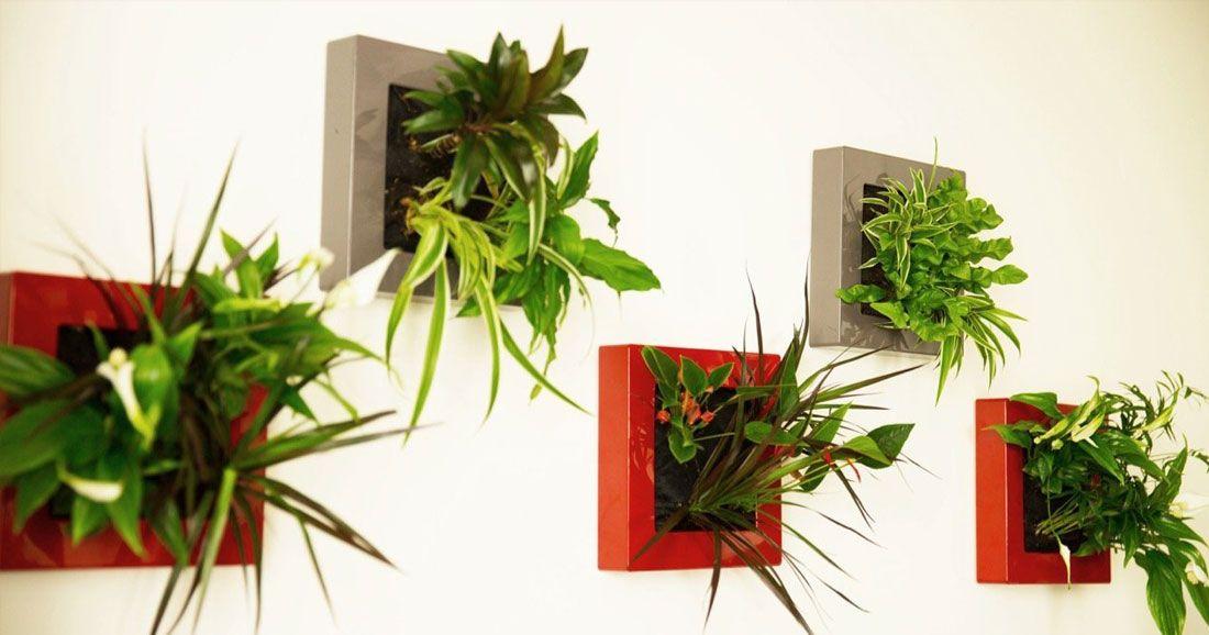 Ces tableaux végétaux vont apporter une touche de nature chez vous ... 9ae03a1b596