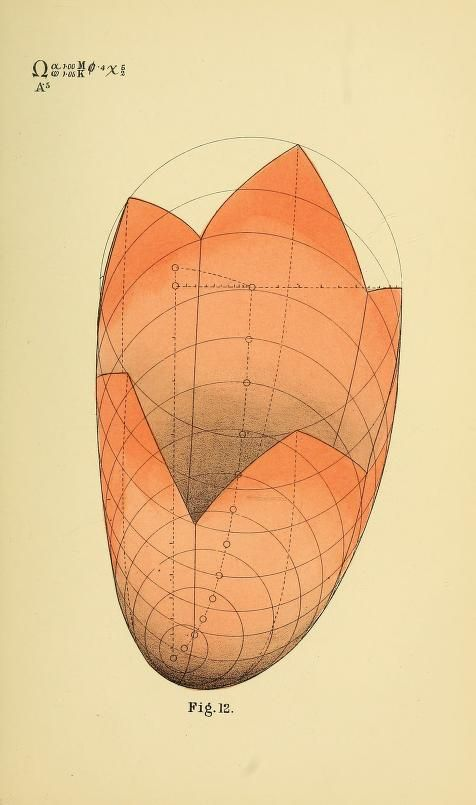 Geometrical Psychology  Or  The Science Of Repr