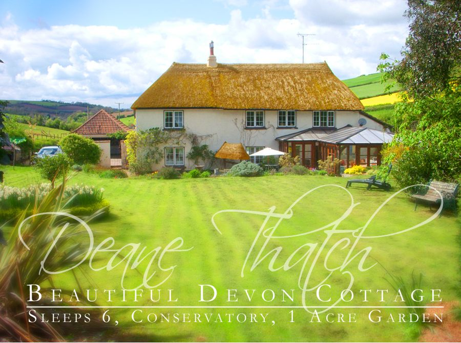 Deane Thatch Holiday Cottage - an excellent Christmas present