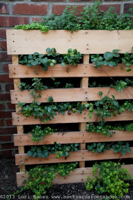 Stacey Brewers Herb Planter Made From A Pallet Backyardrootsbook