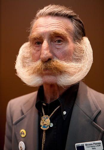 Zakladki Beard No Mustache Moustache Beard