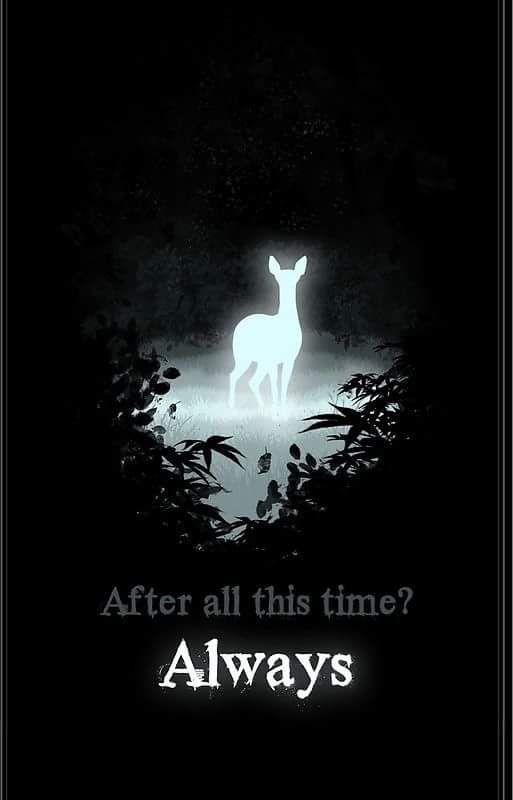 Lily Potter Deer Wallpaper
