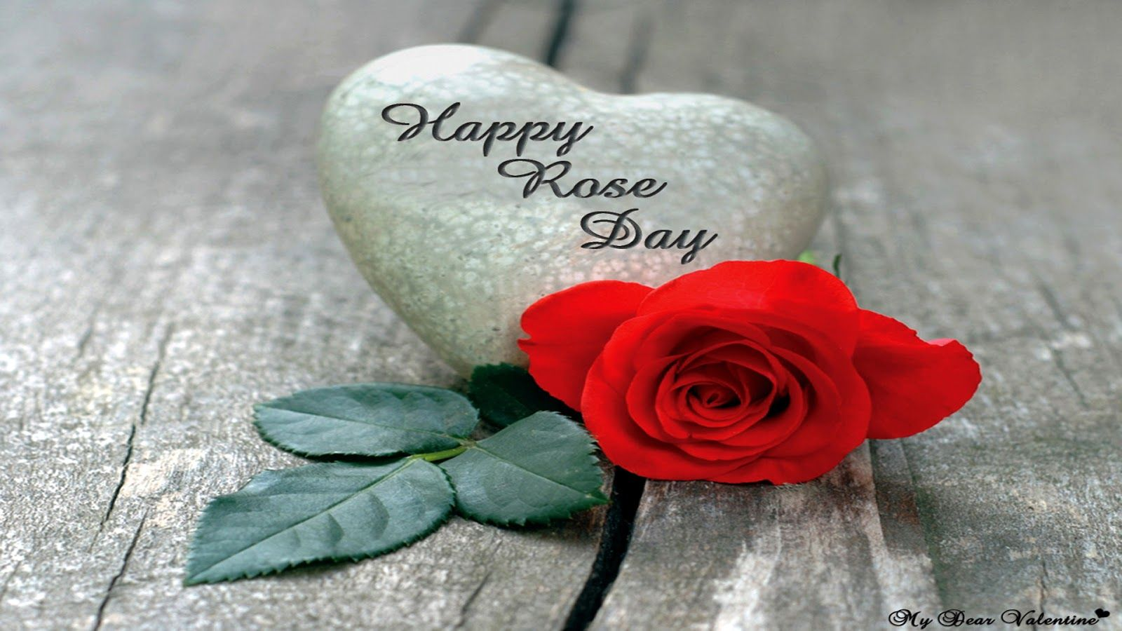 Happy Rose Day Wallpapers HD Download Free 1080p Happy