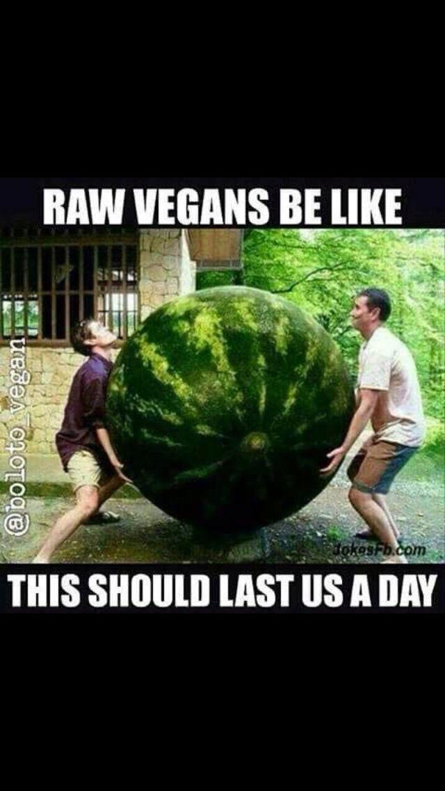 Hahahahahahahahahahahahhahahahahaha Vegan Jokes Vegan Humor Vegetarian Humor