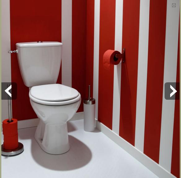Deco Toilette Recherche Google Deco Toilettes Decoration Toilettes Deco Wc