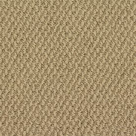 Stainmaster Oracle Active Family Chrysler Bldg Berber Carpet Sample S663397chrysler-Bldg