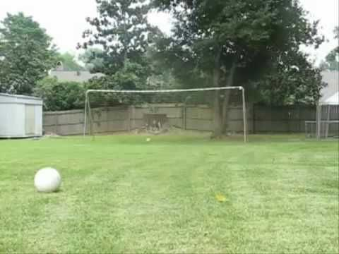 Montage Of Backyard Soccer Goals