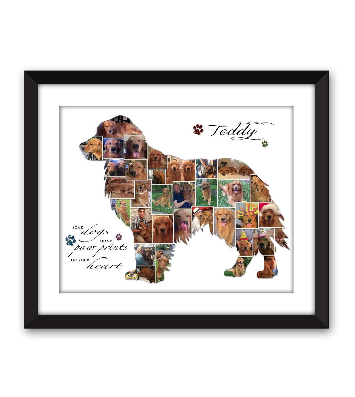 Golden Retriever Goldie Dog Puppy Service Dog Canine Pet Pet
