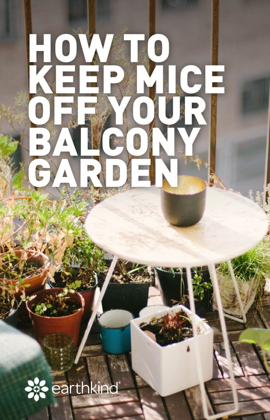 How To Keep Mice Off Your Balcony Garden Earthkind Balcony Garden Garden Care Patio Garden