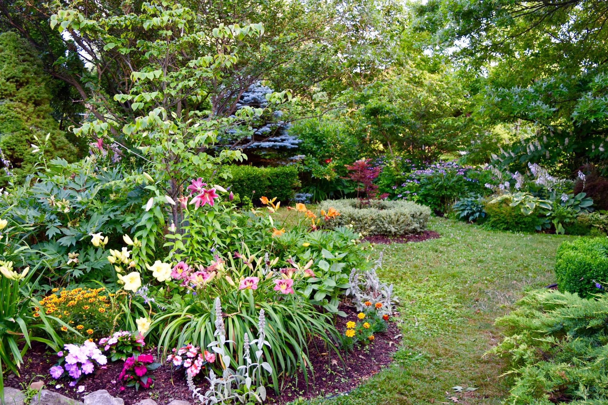 Press Kit About Gardens Buffalo Niagara Buffalo Ny Small Backyard Gardens Garden Planning Layout Gardening Photography