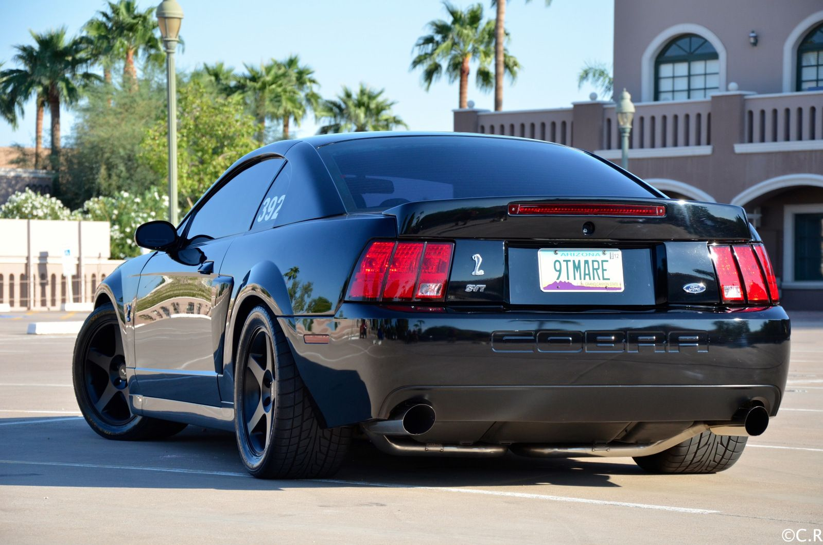How Many Terminator Mustangs Were Made