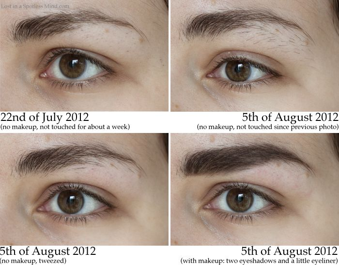 Left Brow Comparison Random Pinterest Eyebrows Brows And