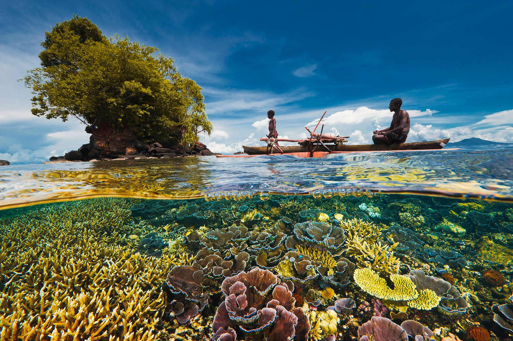 Coral Reefs Doing Better Than Expected In Many Areas Coral Reef National Geographic Photography Ocean