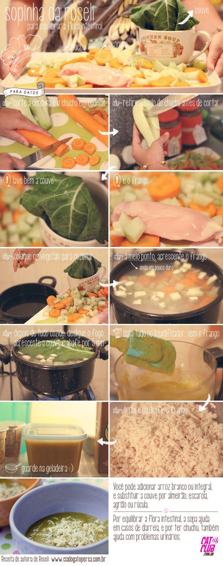sopa para gatos