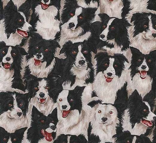 1 Yard Border Collies Only Makower Novelty Fabric From The Uk By
