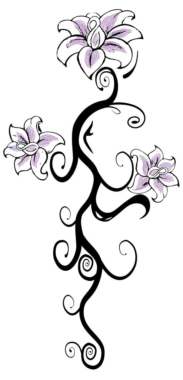 Jasmine Flower Drawing Tattoo Flower Jasmine Flower Tattoo Art