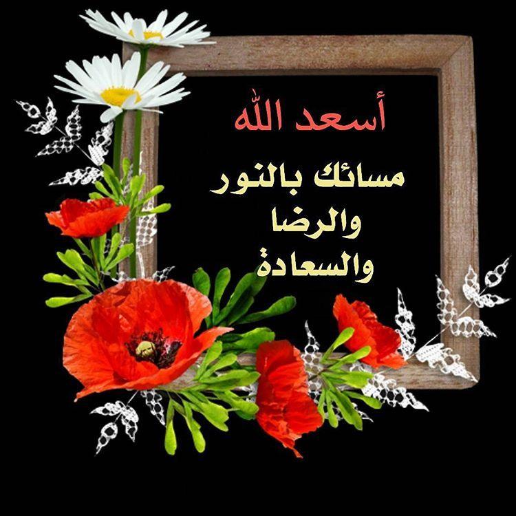 في حياتــــــــي أحباب لايمكنني وصفهم سوى أنهم للوفــــــاء باب وللجمـــــال آداب Evening Greetings Arabic English Quotes Night Quotes