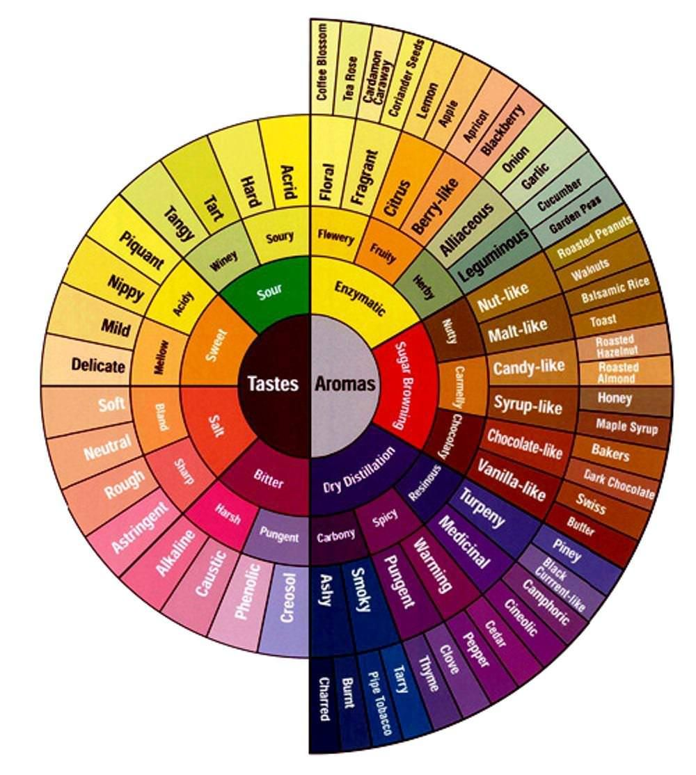 the-color-wheel-paint-store (1000×1114) | draw stepstep