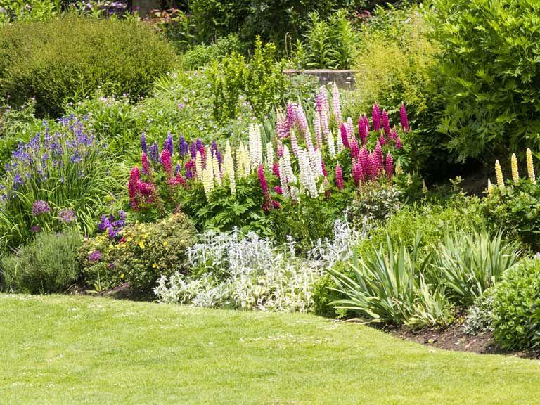 Superb Top Tips And Ideas For A Better Garden Border.