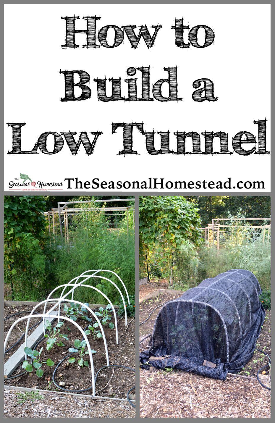 How to Build A Low Tunnel | Autumn garden, Garden
