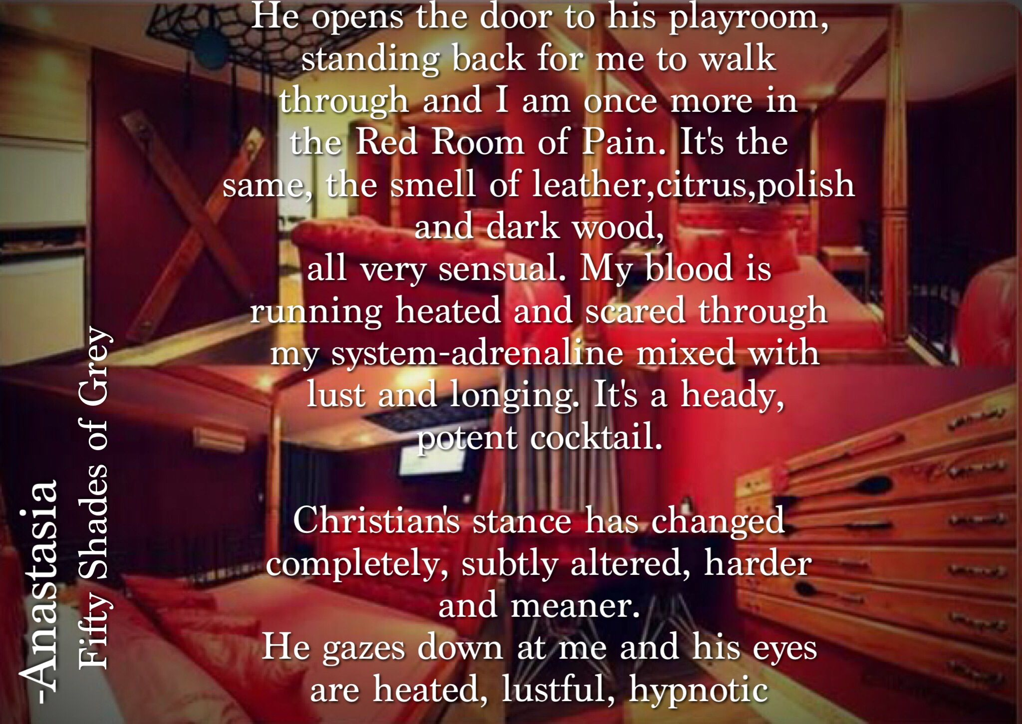Red Room Of Pain Fifty Shades Grey Quotes