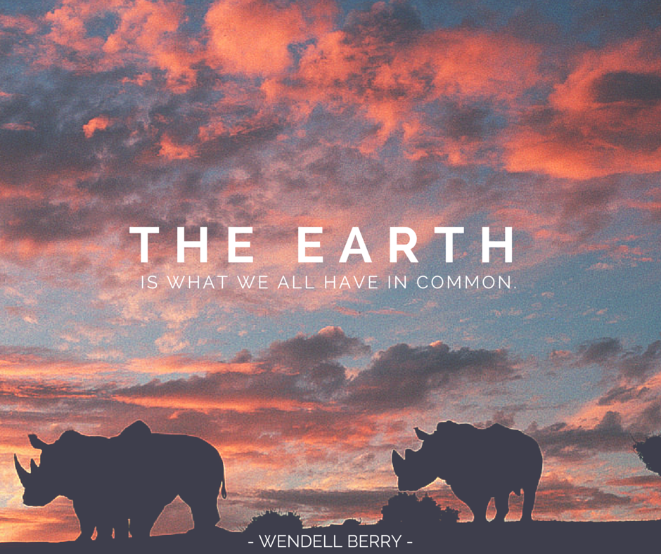 San Diego Zoo | Earth day quotes, Earth quotes, Earth day