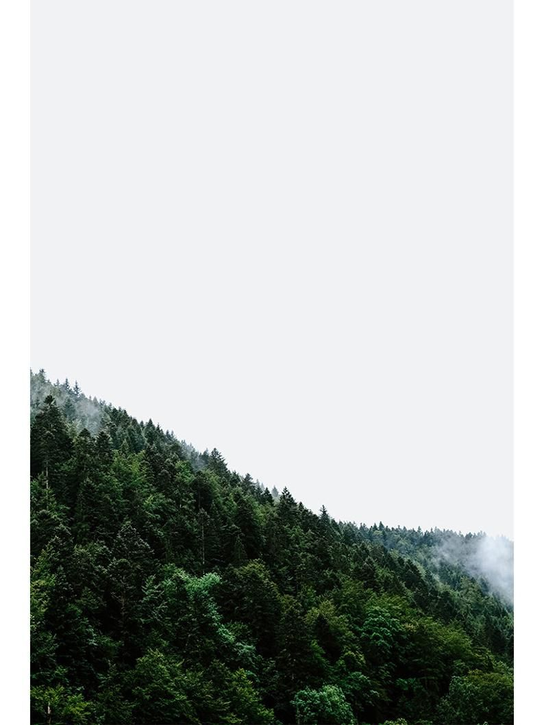 Best Set Of 5 Prints Green Forest Set Nature Landscape Trees 400 x 300