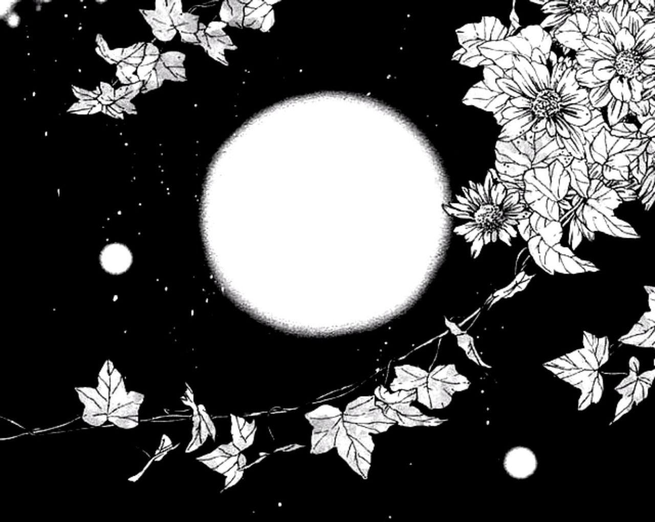 ▾ ᨑ @𝘵𝘢𝘦𝘹𝘴𝘸﹆. ۰ ⸼ ۫ 🍃   Anime background, Flowery wallpaper, Vintage  poster design