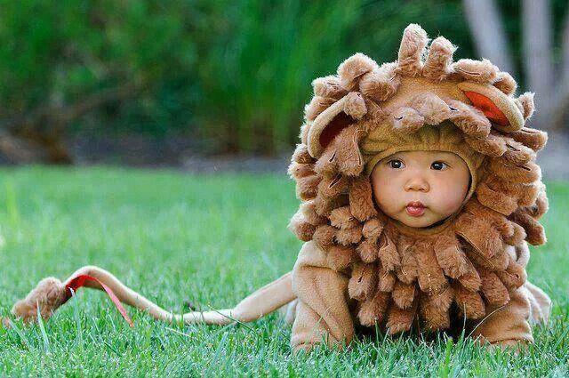 Cutest lion ever!  sc 1 st  Pinterest & Cutest lion ever! | Kids...being kids! So Cute! | Pinterest | Lions ...