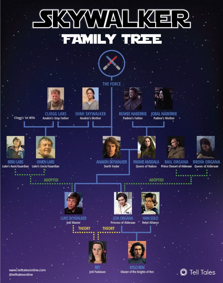 Star Wars – Skywalker Family Tree Explained [Infographic]