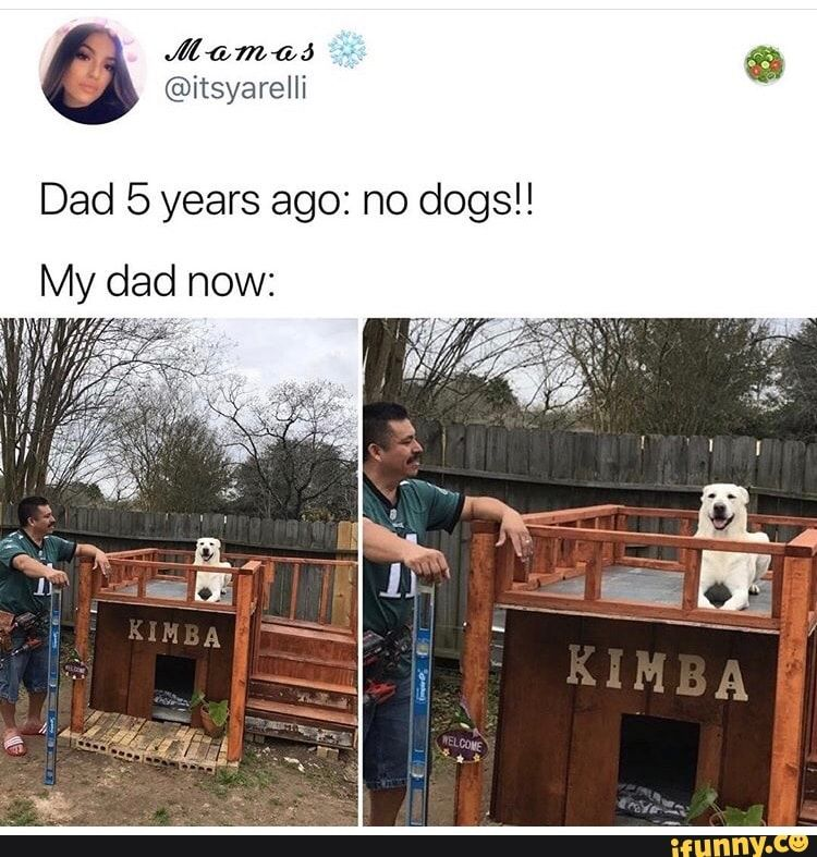 Dad 5 years ago no dogs!! My dad now iFunny