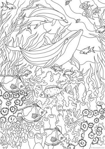 Ocean Life – Dolphins colouring page | Printable adult ...