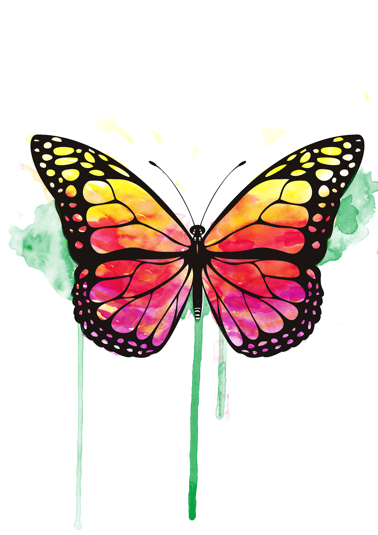 Beautiful Butterfly Art Creative