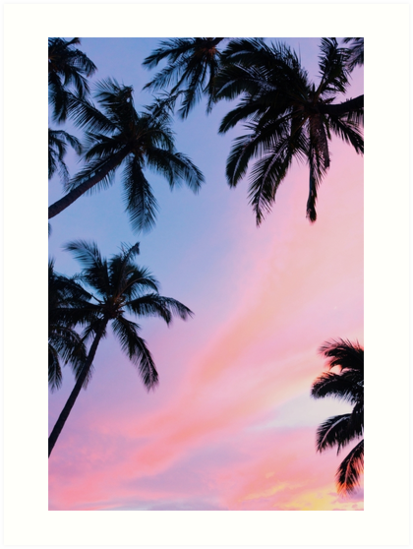 Beautiful Pink Sunset Palm Trees Artwork Design Millions Of Unique Designs By Independent Artist Palm Trees Wallpaper Wallpaper Iphone Summer Tree Wallpaper