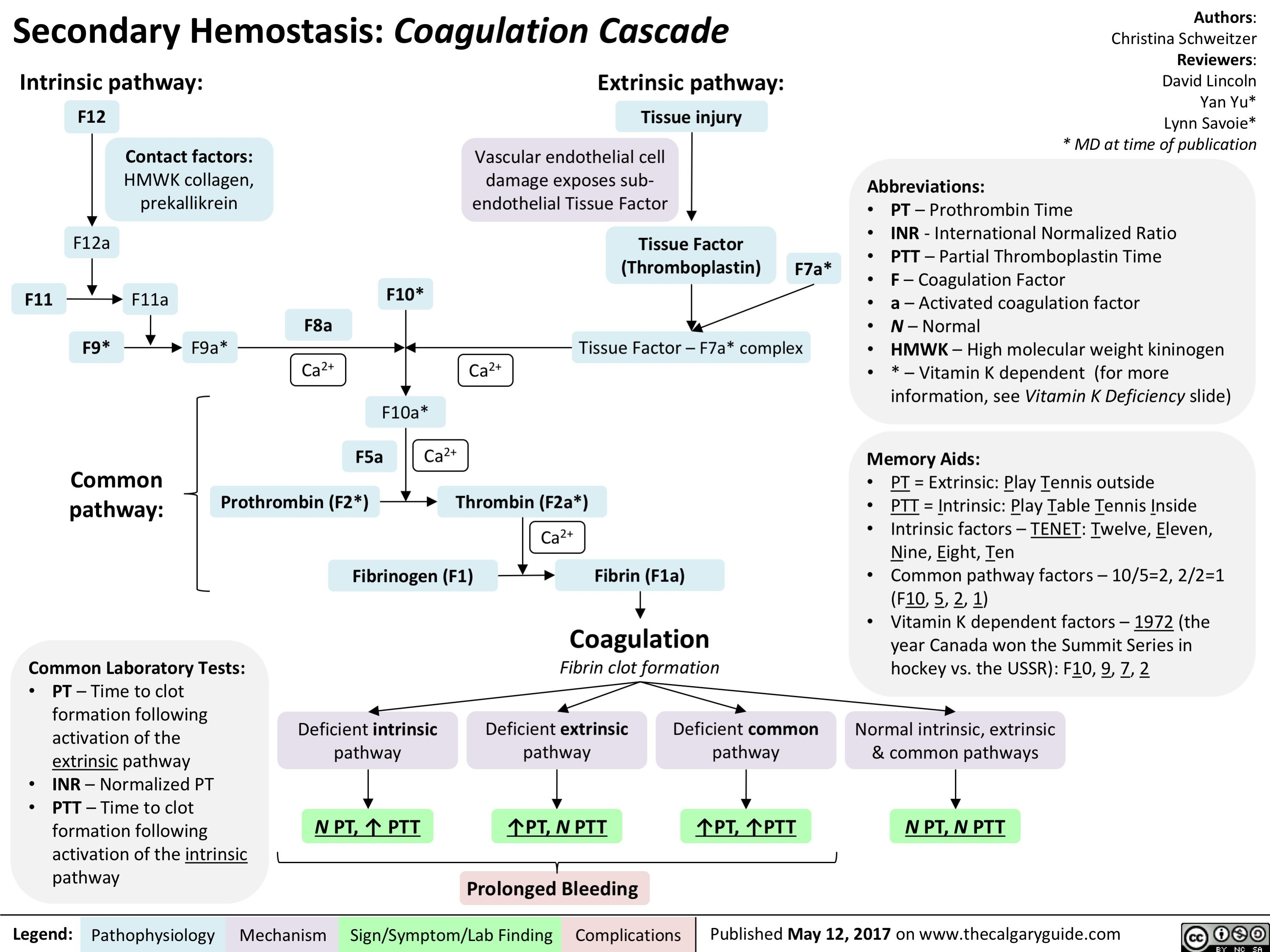 Stago at the Heart of Haemostasis