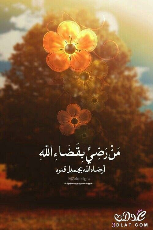 الرضا بالقضاء Quran Quotes Love Islamic Love Quotes Funny Arabic Quotes