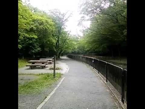 The Lake Biwa canal琵琶湖疏水12 - YouTube