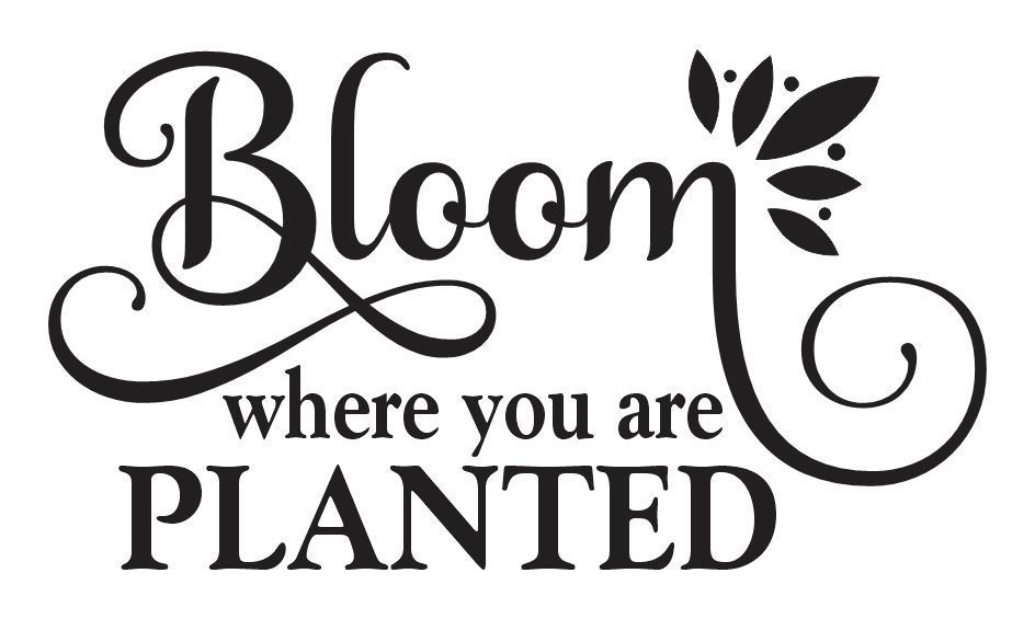 Garden Stencil Bloom Where You Are Planted 12x20 For Signs Family Kitchen Bloom Where You Are Planted Painted Wood Signs Plant Signs