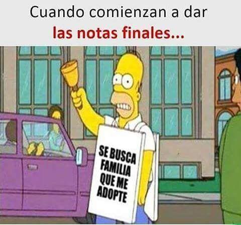 48 Imagenes De Memes Muy Divertidos Graciosos Y Chistosos New Memes Funny Spanish Memes Spanish Jokes