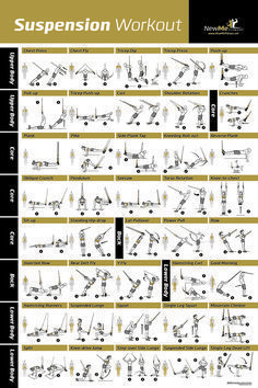 awesome suspension exercise poster for trx workouts i've