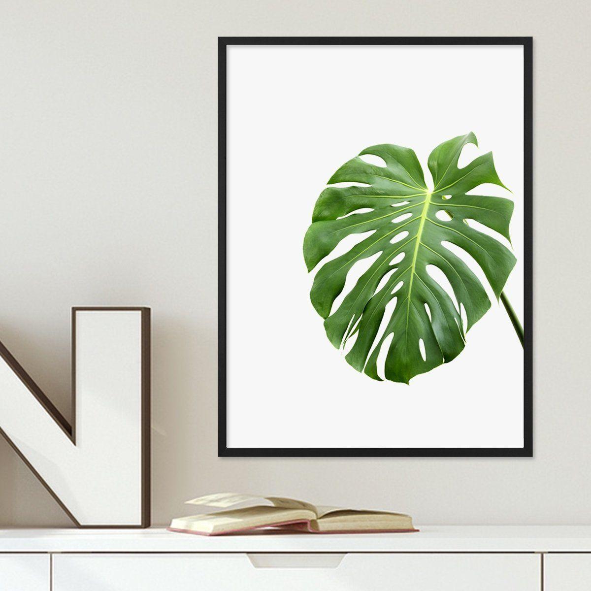 Poster \'Monstera Blatt\' 30x40 cm Motiv Natur Foto Pflanze ...