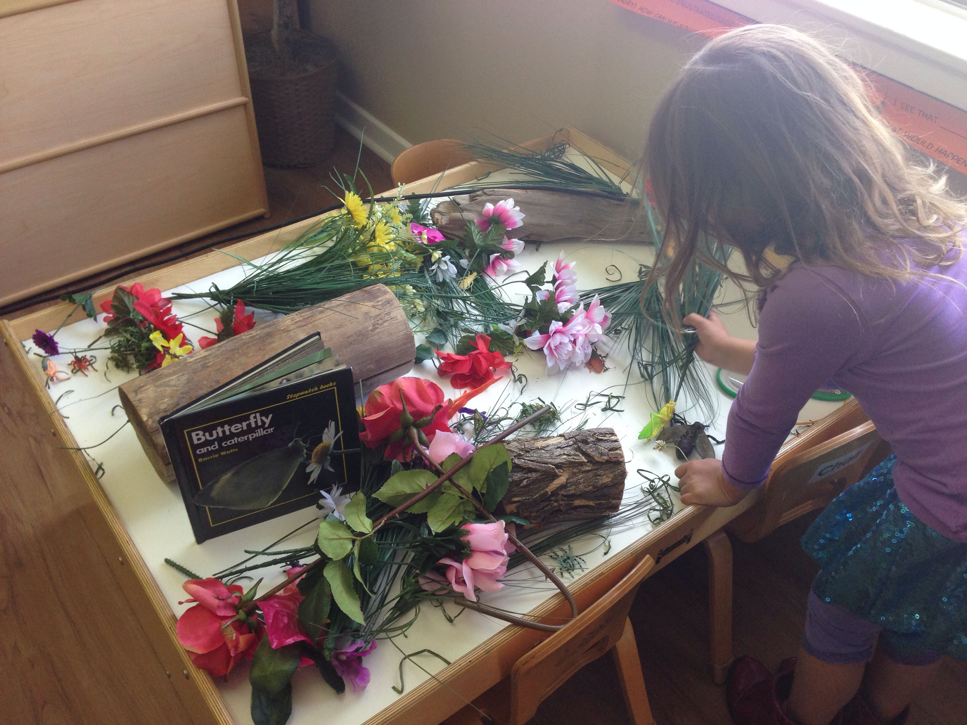 Butterfly Caterpillar Discovery Table Bright Beginnings